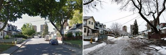 Don't you miss leaves? Before and After photos of the Toronto Ice Storm